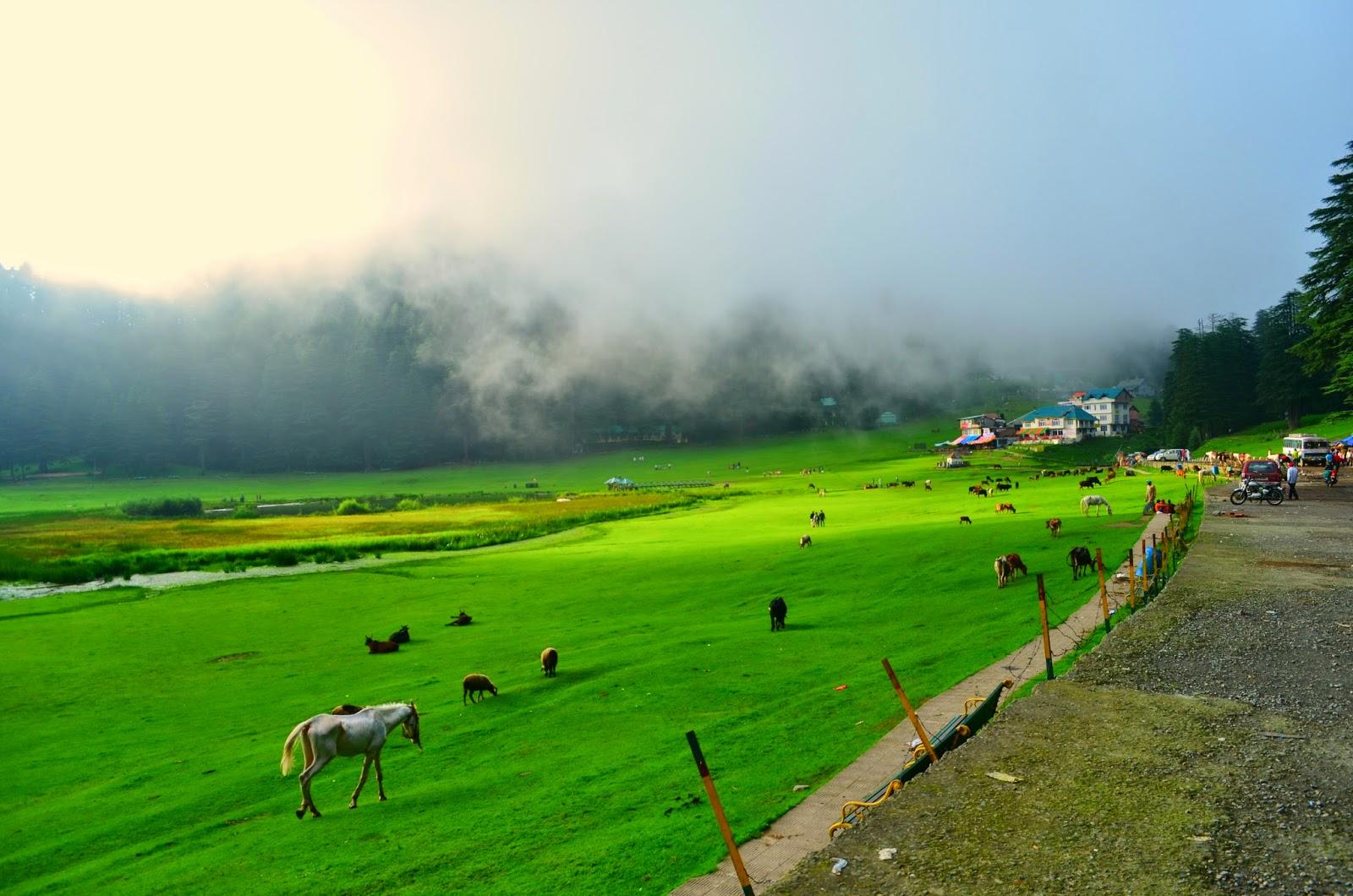 15 Best summer vacation destination around Delhi - Top ...