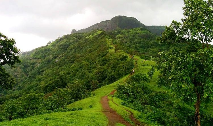 8 Top Hill Stations of Maharashtra You Must visit in Summer 2021