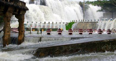 Thiruparappu Waterfalls