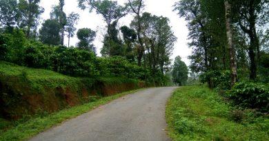 Sakleshpur, Coffee estate