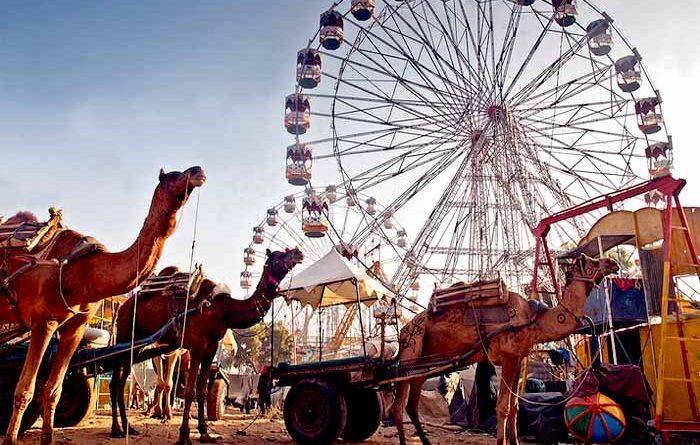 Winter exhibitions in Pushkar