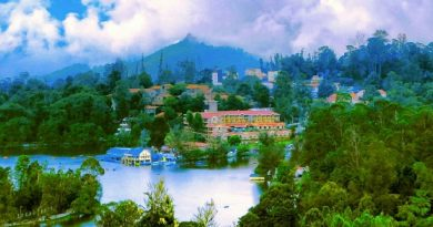 Kodaikanal for romantic holiday