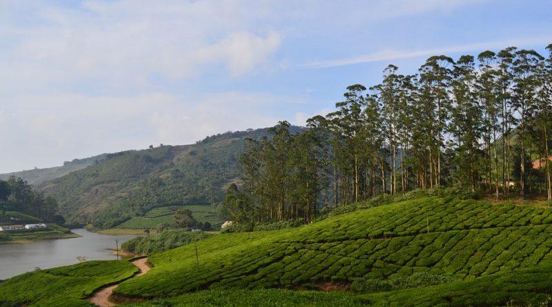 Unexplore Theni in Tamil nadu
